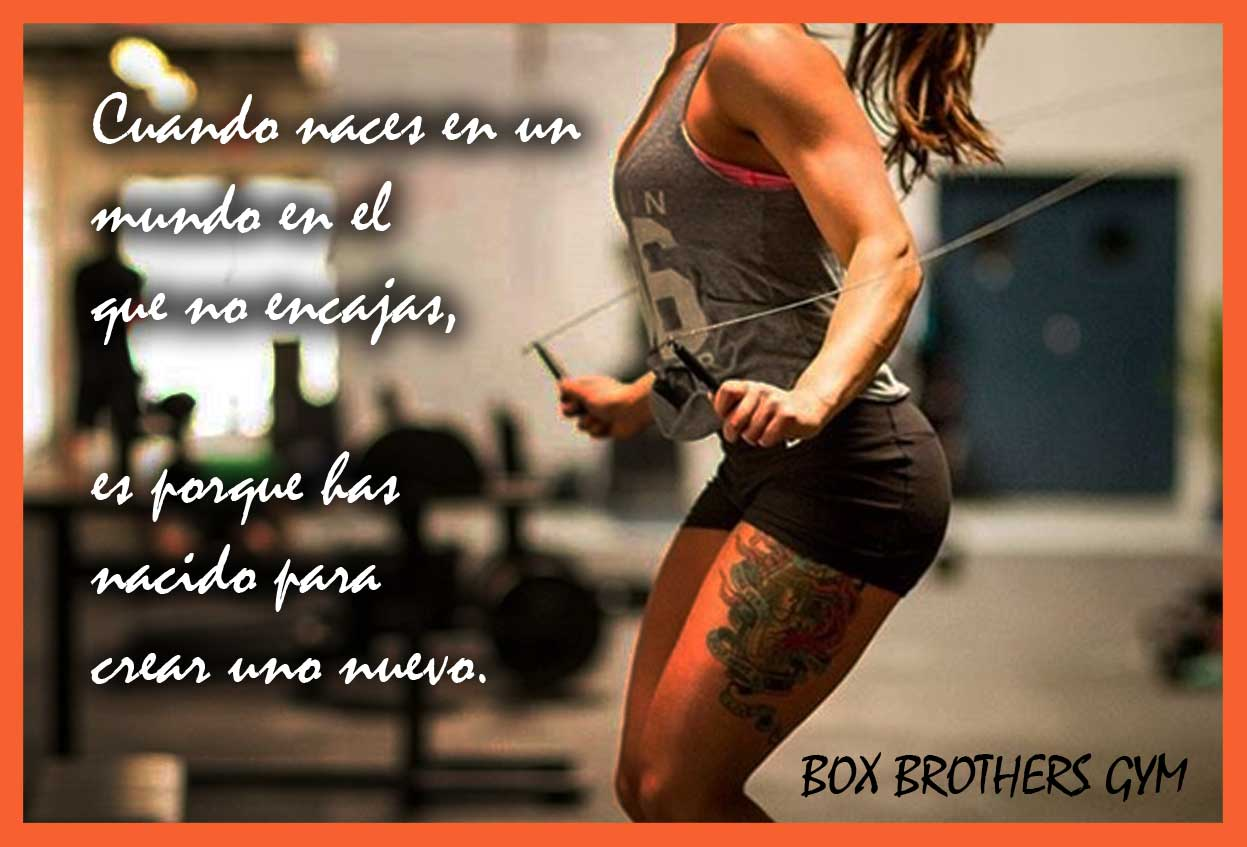Frases Motivadoras Box Brothers Gym